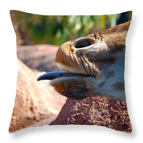 Giraffe Throw Pillow featuring the photograph How About A Kiss by Donna Proctor