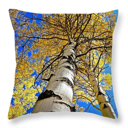 Aspen Throw Pillow featuring the photograph How High Is It by Elisabeth Derichs