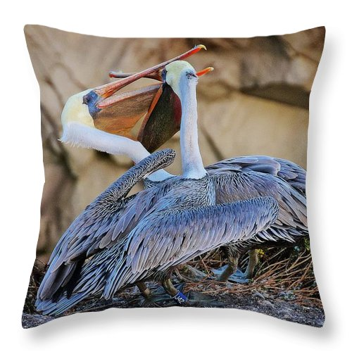 Nature Throw Pillow featuring the photograph How Pelicans Kiss, California Brown Pelicans by Zayne Diamond Photographic