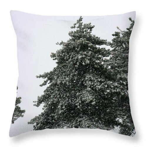Frost Throw Pillow featuring the photograph How Picturesque by David Dunham