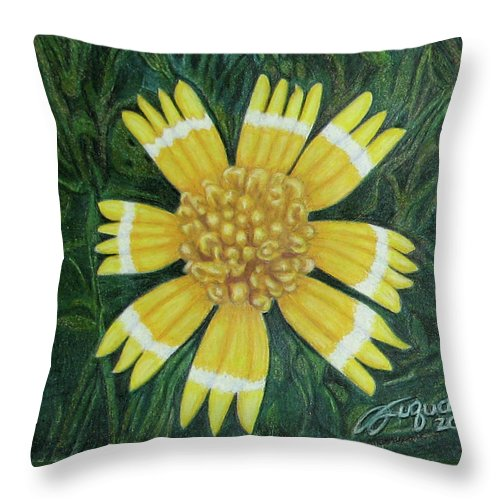 Fuqua - Artwork Throw Pillow featuring the drawing Huisache Daisy by Beverly Fuqua