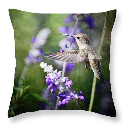 Hummingbird Throw Pillow featuring the photograph Hummingbird And Purple Lupine by Saija Lehtonen