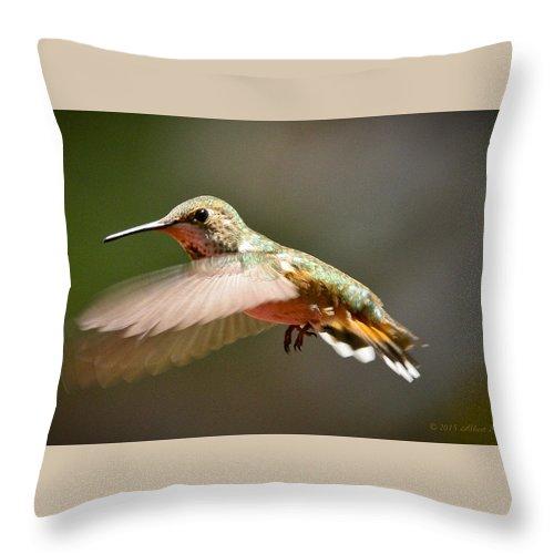 Hummingbird Throw Pillow featuring the photograph Hummingbird Facing Left by Albert Seger