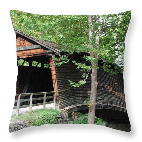 Rock Throw Pillow featuring the photograph Humpback Bridge by Eric Liller