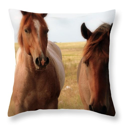 Horse Throw Pillow featuring the photograph Hushed by Elizabeth Hart