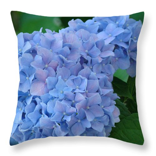 Nature Throw Pillow featuring the photograph Hydrangea Floral Flowers Art Prints Baslee Troutman by Baslee Troutman