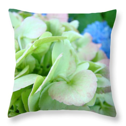Hydrangea Throw Pillow featuring the photograph Hydrangea Flowers Art Prints Floral Gardens Gliclee Baslee Troutman by Baslee Troutman