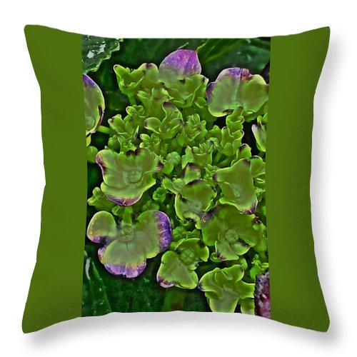 Hydrangea Throw Pillow featuring the digital art Hydrangea by Kumiko Izumi