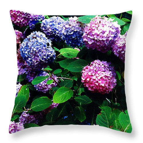 Flowers Throw Pillow featuring the photograph Hydrangeas by Nancy Mueller