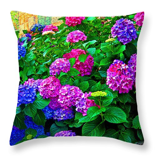Hydrangeas Throw Pillow featuring the photograph Hydrangeas by Susie Slosberg