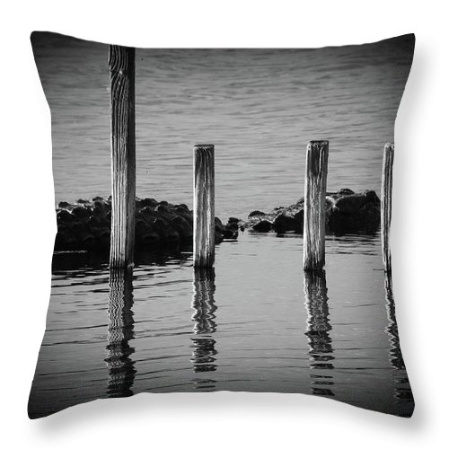 American Alligator Throw Pillow featuring the photograph I Am Gator, No. 86 by Elie Wolf