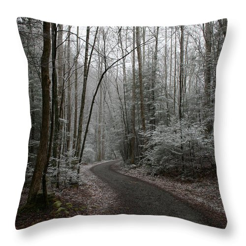 Nature Road Country Woods Forest Tree Trees Snow Winter Peaceful Quite Path White Forest Drive Throw Pillow featuring the photograph I Am The Way by Andrei Shliakhau
