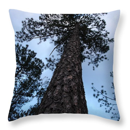 Tree Throw Pillow featuring the photograph I Can Touch The Sky.... Can You by Shelley Jones