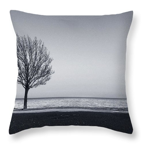 Tree Throw Pillow featuring the photograph I Didnt Hear You Leaving by Dana DiPasquale