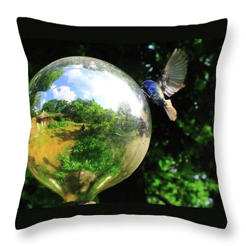 Blue Bird Throw Pillow featuring the photograph I Love Me 2 by David Arment