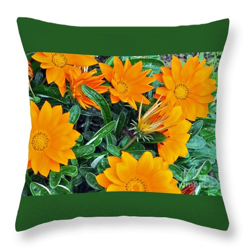 Flowers Throw Pillow featuring the photograph I Love Orange Flowers by Lydia Holly