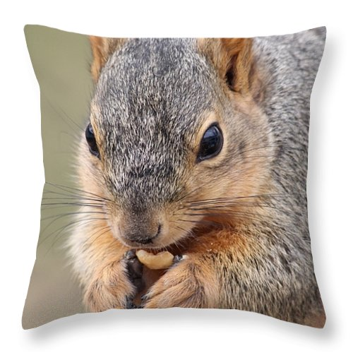 Squirrel Throw Pillow featuring the photograph I Love Peanuts by Lori Tordsen