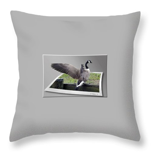 2d Throw Pillow featuring the photograph I Made It by Brian Wallace