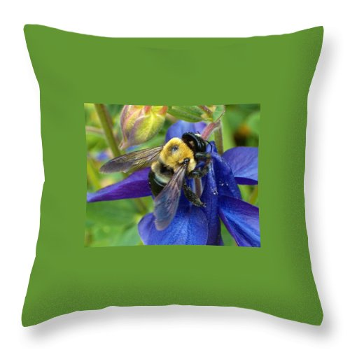 Bee Throw Pillow featuring the photograph I Never Knew by Sara Raber