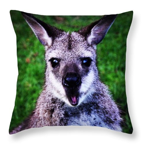 Beautiful Throw Pillow featuring the photograph I Think I Took This Guy By Suprise 😯 by Richard Atkin