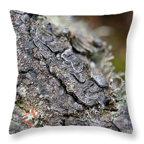 Throw Pillow featuring the photograph I Want To Live by Line Gagne