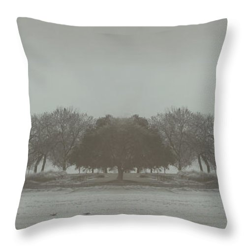 Landscape Throw Pillow featuring the photograph I Will Walk You Home by Dana DiPasquale