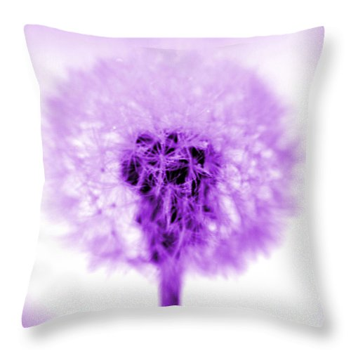 Purple Throw Pillow featuring the photograph I Wish In Purple by Valerie Fuqua