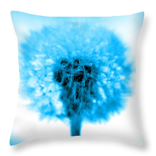 Blue Throw Pillow featuring the photograph I Wish In Turquoise by Valerie Fuqua