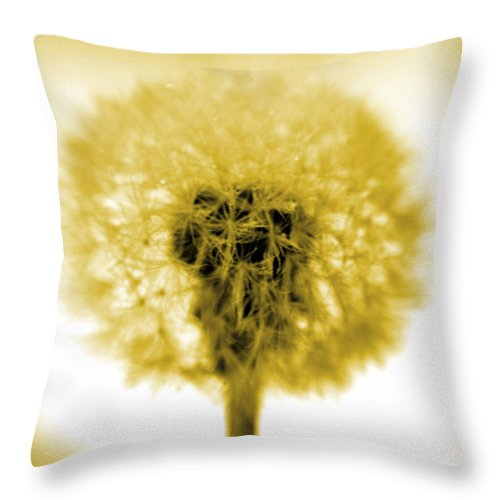 Dandelion Throw Pillow featuring the photograph I Wish In Yellow Gold by Valerie Fuqua