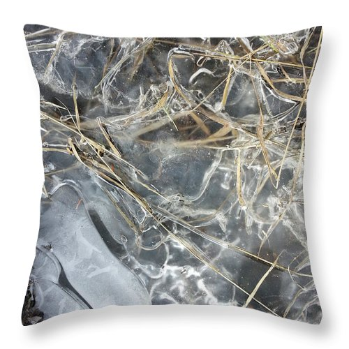 Ice Throw Pillow featuring the photograph Ice Art IIi by Joanne Smoley