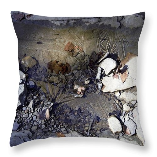 Water Throw Pillow featuring the photograph Ice by Christina McNee-Geiger