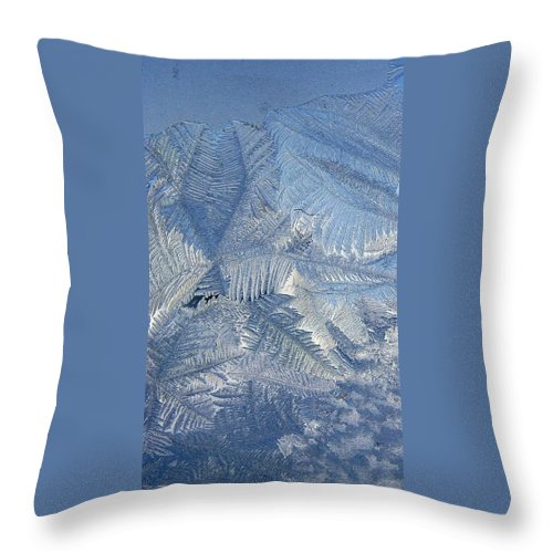 Ice Throw Pillow featuring the photograph Ice Crystals by Rhonda Barrett