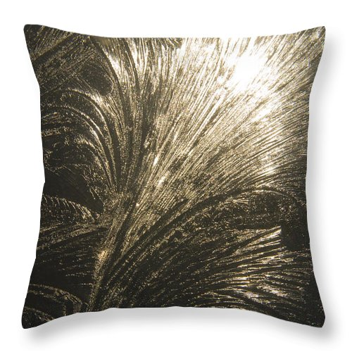 Ice Throw Pillow featuring the photograph Ice Design On Glass by Steve Somerville