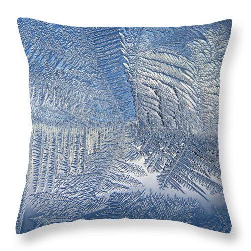 Ice Throw Pillow featuring the photograph Ice Galore by Rhonda Barrett
