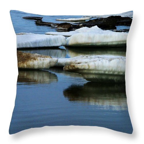 Ice Throw Pillow featuring the photograph Ice In The Arctic by Anthony Jones