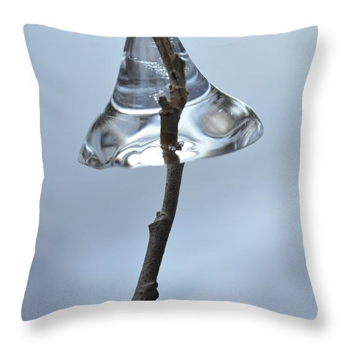 Ice Throw Pillow featuring the photograph Ice On A Stick by Glenn Gordon
