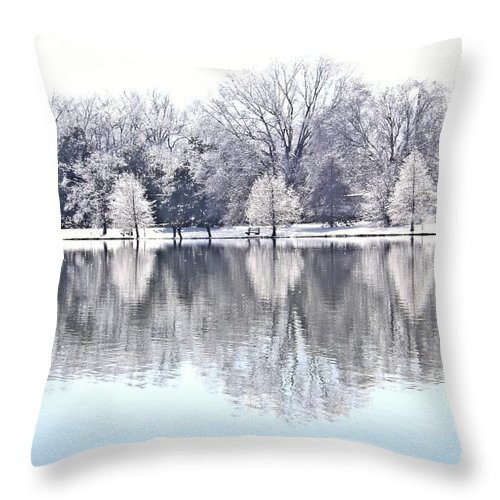 Ice Throw Pillow featuring the photograph Ice Park by Charleen Treasures