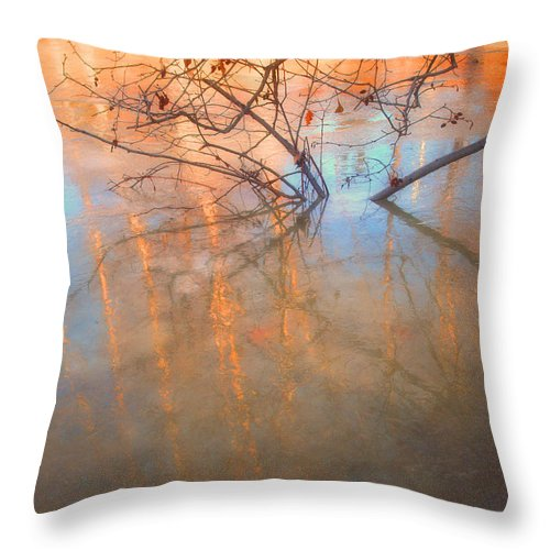 Ice Throw Pillow featuring the photograph Ice Reflections 2 by Tara Turner