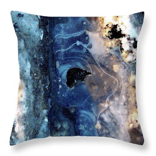 Marcia Lee Jones Throw Pillow featuring the photograph Ice Siren by Marcia Lee Jones
