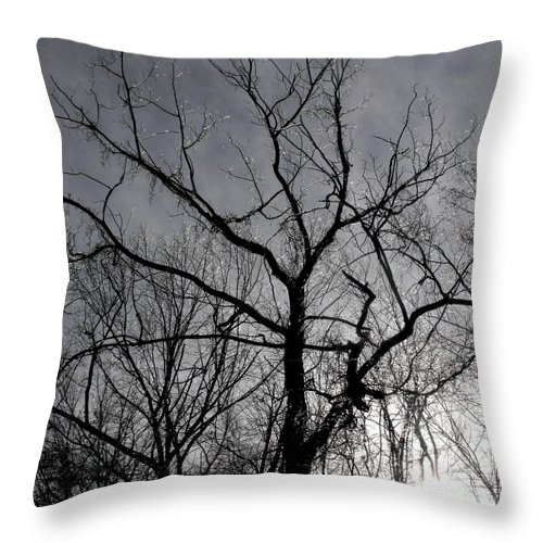 Tree Throw Pillow featuring the photograph Ice Storm by Kristie Bonnewell