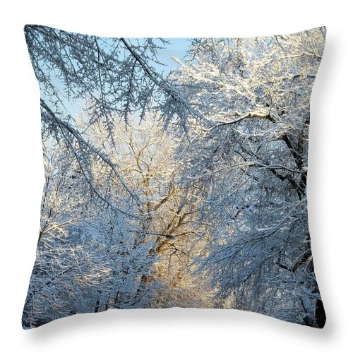 Ice On Trees Throw Pillow featuring the photograph Ice Storm On The 6th IIi by Jacqueline Russell