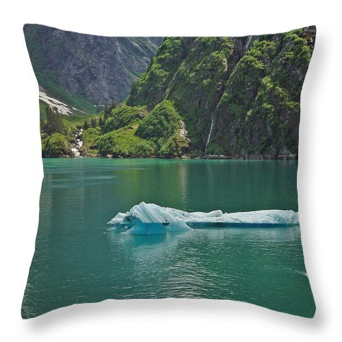 Iceburg Throw Pillow featuring the photograph Ice Tracy Arm Alaska by Heather Coen