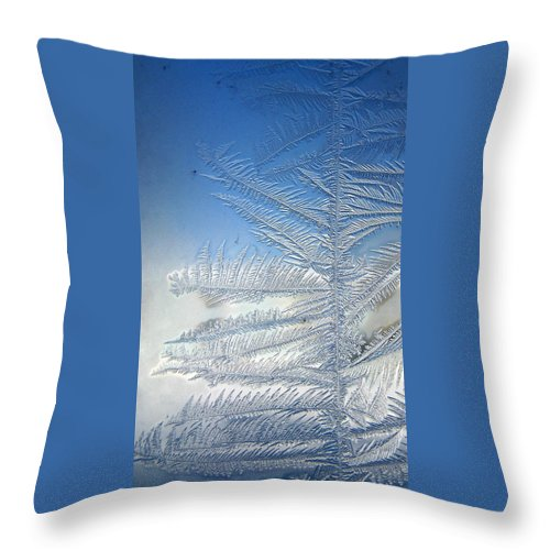 Ice Throw Pillow featuring the photograph Ice Tree by Rhonda Barrett