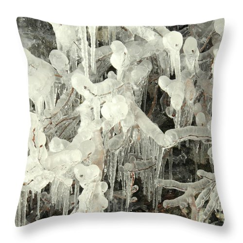 Ice Throw Pillow featuring the photograph Ice Works by Frank Townsley