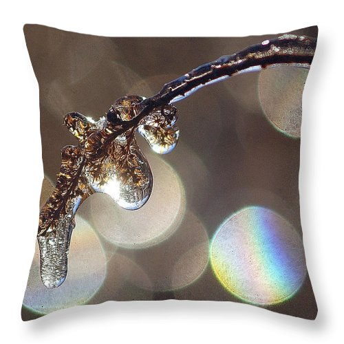 Twig Throw Pillow featuring the photograph Iced Twig by Steve Somerville
