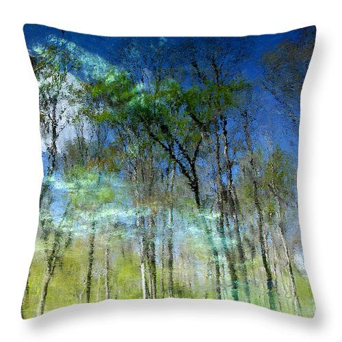 River Throw Pillow featuring the photograph Ichetucknee Reflections by David Lee Thompson