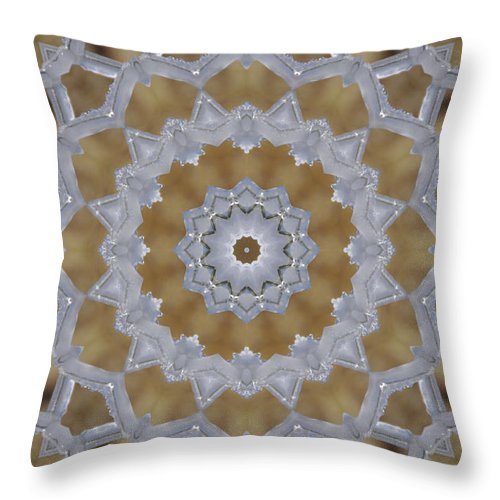 Texas Throw Pillow featuring the photograph Icy Lace Doily 2 by Robyn Stacey