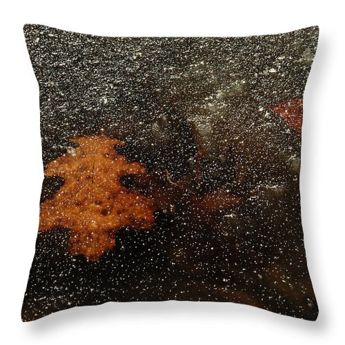 Leaf Throw Pillow featuring the photograph Icy Leaf by Michael McGowan