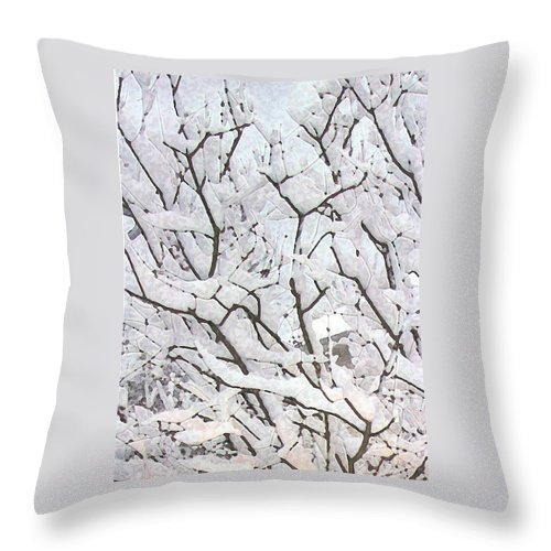 Ice Throw Pillow featuring the photograph Icy Winter Scene by Michael Vigliotti