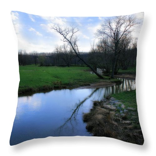 Landscape Throw Pillow featuring the photograph Idyllic Creek by Angela Rath